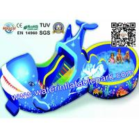Quality Summer Ultimate Amusement  Dolphin Water Park  With swimming Pool for sale