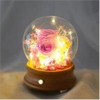 Quality Wholesale Rose Preserved Flower in Glass Dome Flower for Valentines Day rose gift for sale