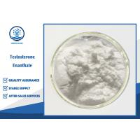 China Muscle Gain Oral Anabolic Steroids , Testosterone Enanthate Powder CAS 315-37-7 wholesale