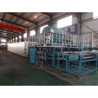 Quality TOP quality egg tray machine , High Quality Paper Egg Tray Machine for sale
