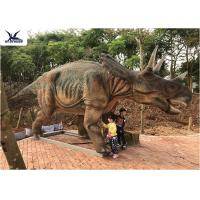China Realistic Full Size Dinosaur Models , Garden Artificial Life Size Dinosaur Models  wholesale
