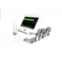 China Fetal / Maternal Monitor Multipara Patient Monitor Vital Monitor For Pregnant Woman Touch Screen Optional wholesale
