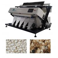 Quality Multi Species Seed Color Sorter Machine For Pumkin Seed With CE UL Approved for sale