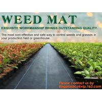 China China Supplier Anti Weed Mat Weed Control Mat 100gsm PP Landscape Fabric Weed Barrier,Weed block mat keep damp and tempe wholesale