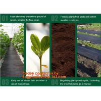 China Agricultural plastic ground cover weed mat, pp weed control mat, for greenhouse and outer use,ground cover, weed mat, ma wholesale