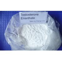 Quality Medical Testosterone Enanthate Steroid Raw Powder 315-37-7 for sale