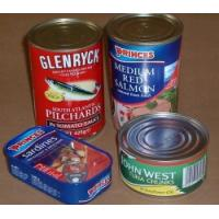 Quality 311# canned mackerel filet in sunflower oil for sale