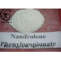 China 62-90-8 Nandrolone Steroid Powder Nandrolone Phenylpropionate NPP Ethanol Soluble wholesale