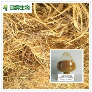 China gentiana lutea (gentian) root extract wholesale