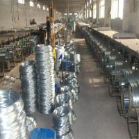 China Electro Galvanized Wire wholesale