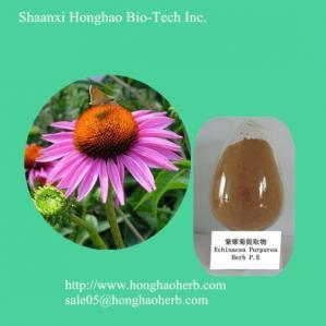 China high Quality Echinacea Extract Echinacea polyphenols wholesale