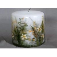 China True Plant Colorful Preserving Pressed Flowers Candles Raw Material For Teaching wholesale