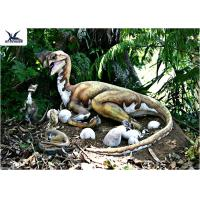 China Outdoor Moving Velociraptor Life Size Model For Garden Display / Festival Exhibition wholesale