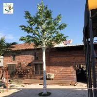 China UVG 20 foot tall synthetic trees artificial ornamental trees with banyan branches best gift for engineers GRE067 wholesale
