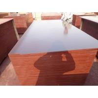 China 18mm Poplar Film Faced Plywood For Construction wholesale