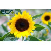 China Sun Flower Seed Derived Brain Health Supplements High Content 40% HPLC Tested wholesale