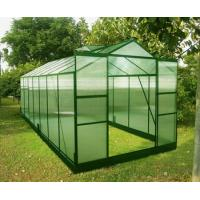 Quality Double Doors Sturdy Aluminum Framing 4mm UV Twin-wall Small Plastic Greenhouses 8' X 14' for sale