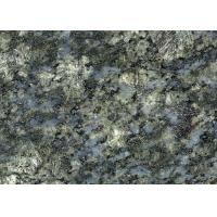 Quality Butterfly Blue Granite Stone Tiles For Restaurants Flooring Countertop for sale