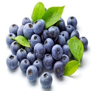 China fruit powder pure Blueberry Powder wholesale