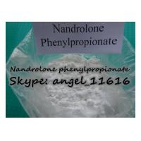 China Healthy NPP Injectable Steroids Nandrolone Powder Nandrolone Phenylpropionate wholesale
