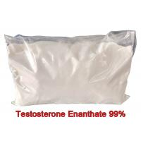 China Fitness Test E Pure Testosterone Steroid Enanthate Powders Hormone CAS 315-37-7 wholesale