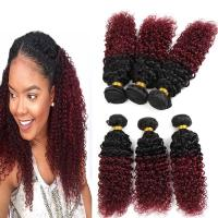 China 8A Brazilian Virgin Hair Ombre Human Hair Extensions 1B / 99J Kinky Curly Hair wholesale