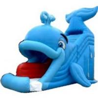 China Inflatable Water Slide (C11) wholesale