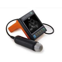 China Digital Medical Veterinary Ultrasound Scanner With 3.5 Inch Screen And Frequency Of Porbe 2.5M 3.5M wholesale
