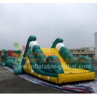 China Inflatable Water Game, Inflatable Crocodile Water Toy (LY-W22) wholesale