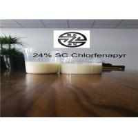 China 24% SC Phantom Pest Control High Efficiency 38089311 Soluble In Acetone wholesale