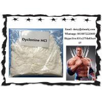 Buy cheap Oral Local Anesthetic Drugs Dyclonine Hydrochloride / Procainamide HCl CAS 536-43-6 from wholesalers