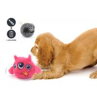 China Non Toxic Dog Entertainment Toys , Indoor Plastic Material Pet Dog Toy for sale