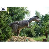 Quality Forest Decoration Handmade Dinosaur Garden Statue Life Size Real Dinosaur Models for sale