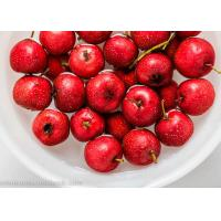 Quality Freeze - Dried Skin Care Supplements Hawthorn Berry Powder Boost Immune System for sale