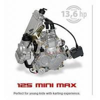 Quality Rotax Fr125 Max Kart Engine for sale