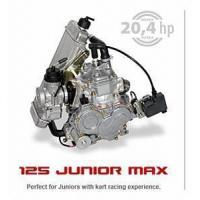Quality Rotax FR 125 Junior Max Kart Engine for sale