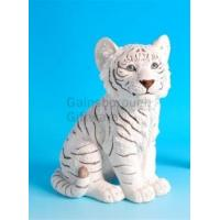 China White Tiger Cub wholesale