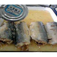 Quality Canned Fish canned mackerel in oil for sale
