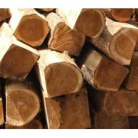 Quality Square Teak Log for sale