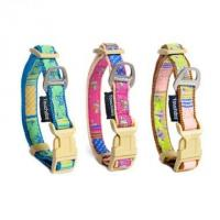 China Nylon Dog collar and Leash wholesale
