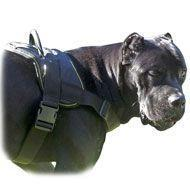 China Nylon multi-purpose dog harness for tracking-pulling-Cane Corso wholesale
