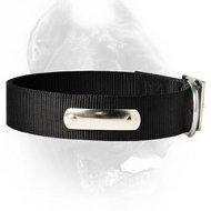China Dog Training Supplies Strongest 2 Ply Nylon Dog Collar w/h name tag/Metal Buckle wholesale