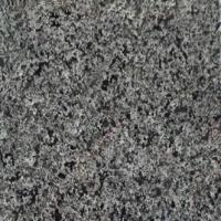 Quality Granite, G654, Shanxi Black, Autummn Gold, Kashimir Gold, Marble, Stone for sale