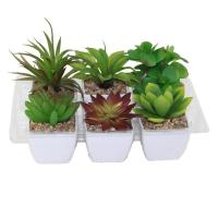 China Artifical Plant wholesale