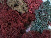 Quality Fish net , yarn waste for sale